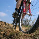 Fotelik vs. Przyczepka rowerowa. Co będzie najlepszym wyborem?